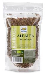 Bild von Govinda - Bio Alfalfa Keimlinge - 125g