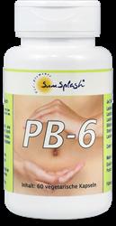 Bild von SunSplash - PB-6 Probiotic - 60 Kapseln
